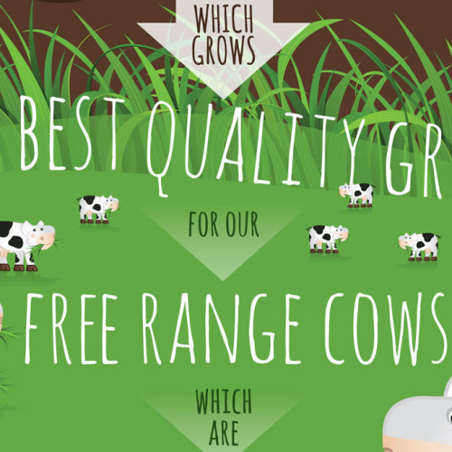 Green-Pastures-Infographic-Featured